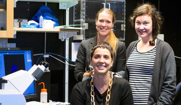 Personlen vid Centre for Cellular Imaging samlade vid ett av centrets mikroskop. Stående från vänster: Maria Smedh och Joanna Pylvänäinen. Sittande syns den vetenskapliga managern Julia Fernandez-Rodriguez. Saknas på bilden gör Carolina Tängemo, som är föräldraledig.