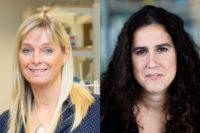 SSF finansierar två industridoktorander vid Sahlgrenska akademin