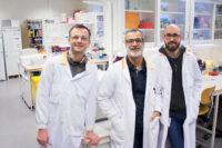 SSF satsar 75 miljoner på nytt sätt att behandla genetiska sjukdomar