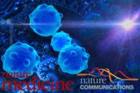 Avancerad djurmodell visar på nya möjligheter att behandla malignt melanom