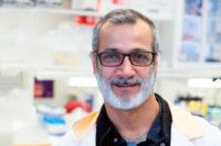 Nästan tio miljoner från Vinnova till två projekt för nya biologiska läkemedel