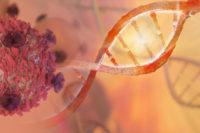 Återkopplingssignaler komplicerar behandling av svårbotad barncancer