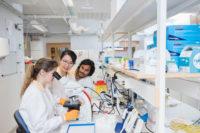 13,5 miljoner till cancerforskning i Västsverige