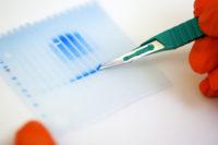 Ny utlysning ger unga forskare tillgång till Core Facilities