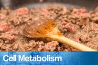 Kolhydratfattig kost kan bli effektiv behandling vid fettleversjukdom