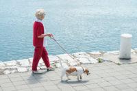 Probiotika kan skydda skelettet hos äldre kvinnor