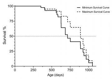 Ett statistiskt diagram, där procenten levande djur mäts på y-axeln och antalet levnadsdagar mäts på x-axeln. En fast linje markerar den minimala överlevnadskurvan, och en streckad linje markerar den maximala överlevnadskurvan.